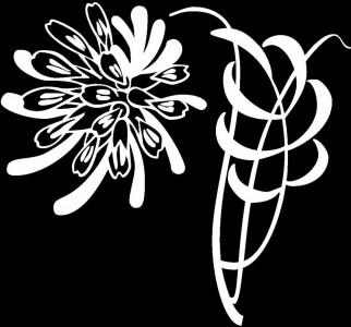 Гравировка цветка на надгробие ЦВ45