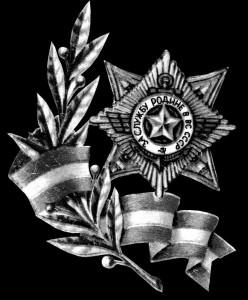 Гравировка ордена за заслуги ЭО 22