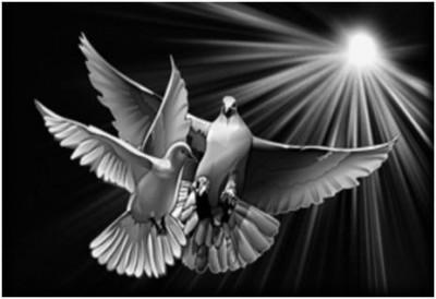 Гравировка голубей и лучей света 17